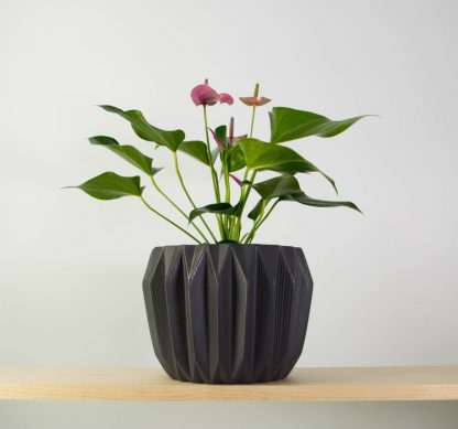 Anthurium Joli in Fluted Pot by Bloomingville