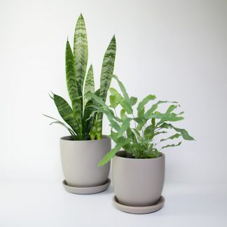 Set of 2 Grey Pots with a matt finish