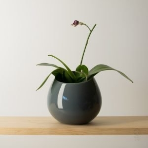 Dark Grey Shelf or Wall Pot (plant example)