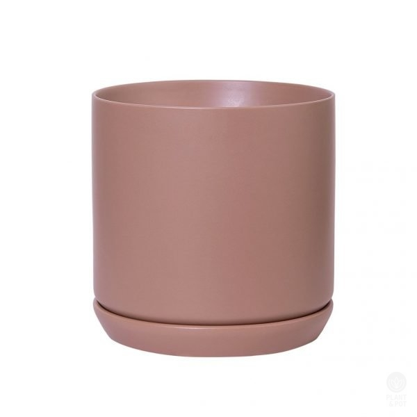 Dusty Rose Pot, Large